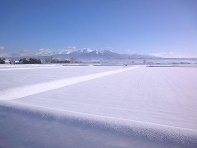 2010121806.jpg