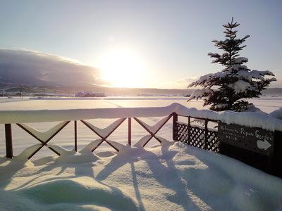 400 detki winter .JPG